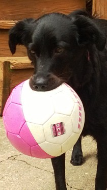 Lucy with Soccer Ball